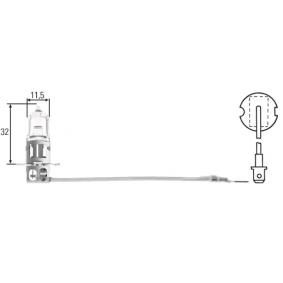 Glühlampe, Hauptscheinwerfer 8GH 002 090-151 Online Shop