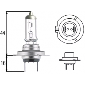 Glühlampe, Fernscheinwerfer (8GH 007 157-551) von HELLA kaufen