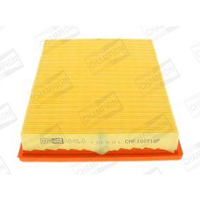 Tailgate struts AFL6048L/C02 CHAMPION