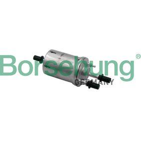 Borsehung SEAT IBIZA Filtro de combustible (B12828)