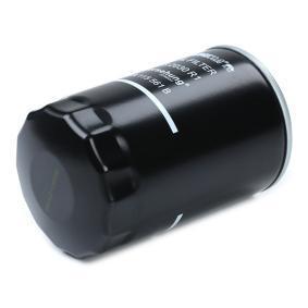 Borsehung Oil Filter (B18018) at low price