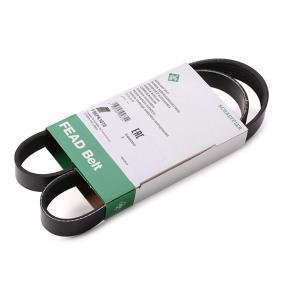 9615208280 für FIAT, ALFA ROMEO, LANCIA, Keilrippenriemen INA (FB 6PK1070) Online-Shop