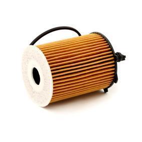 BOSCH Olejový filtr 3165143543887