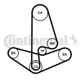 Pompa Acqua + Kit Cinghia Distribuzione CONTITECH(CT846WP1) per VW POLO prezzi