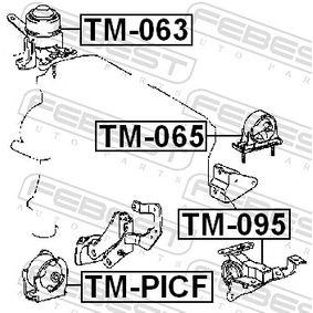 Engine mount TM-PICF FEBEST