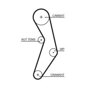 GATES FIAT PUNTO Timing belt (5503XS)