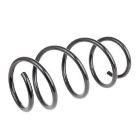 RIDEX Fahrwerksfeder 31336768806 für BMW bestellen