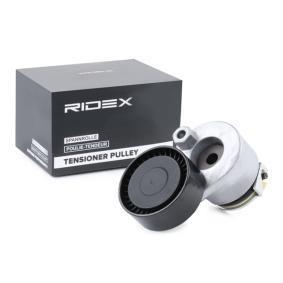 RIDEX 310T0205 Online-Shop