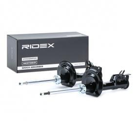 PANDA (169) RIDEX Shock absorber 854S2102