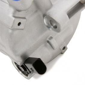 Компресор / -единични части (TSP0155999) производител DELPHI за VW Golf V Хечбек (1K1) година на производство на автомобила 10.2003, 105 K.C. Онлайн магазин