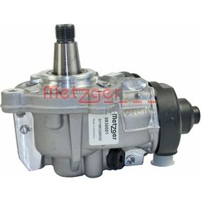 BOSCH High Pressure Pump