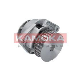 KAMOKA T0024 bestellen