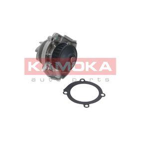 KAMOKA Water pump T0118