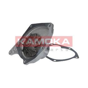 CLIO II (BB0/1/2_, CB0/1/2_) KAMOKA Wasserpumpe T0214