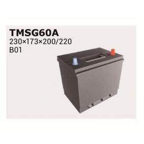 Starterbatterie IPSA Art.No - TMSG60A OEM: FE0518520 für FORD, PEUGEOT, TOYOTA, HYUNDAI, MAZDA kaufen