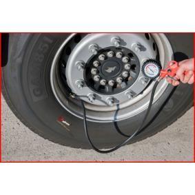 515.1920 Pistolet de gonflage des pneus (contrôle et gonflage) pour voitures