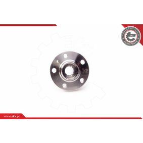 Buje de rueda (29SKV005) fabricante ESEN SKV para SEAT Ibiza IV ST (6J8, 6P8) año de fabricación 05/2010, 70 CV Tienda online