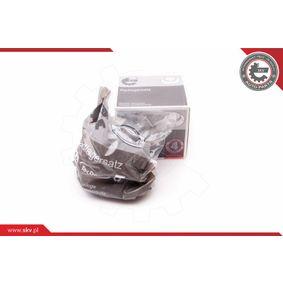 ESEN SKV Cuscinetto mozzo ruota (29SKV014)