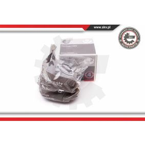 Radlagersatz ESEN SKV Art.No - 29SKV052 OEM: 40202JG01B für PEUGEOT, NISSAN, INFINITI kaufen