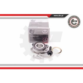 ESEN SKV Wheel Bearing Kit (29SKV095) at low price