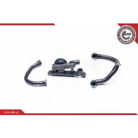 Kit riparazione, Ventilazione monoblocco ESEN SKV Art.No - 31SKV003 OEM: 06F103483E per VOLKSWAGEN, AUDI, SEAT, SKODA comprare
