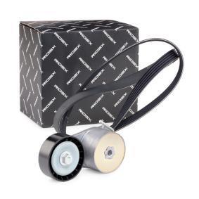 PANDA (169) RIDEX V-ribbed belt kit 542R0016