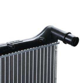 RIDEX Radiator engine cooling (470R0270)