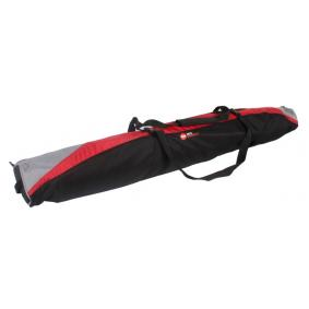 Ski bag for cars from ROSZ - cheap price