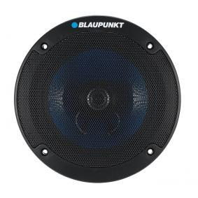 BLAUPUNKT Speakers 1 061 556 150 001