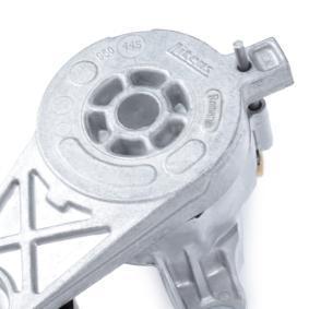 SKF Spannrolle, Keilrippenriemen VKM 31022