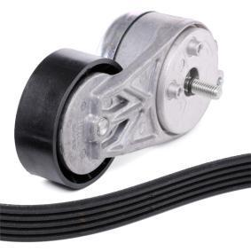SKF V-ribbed belt kit (VKMA 32040)