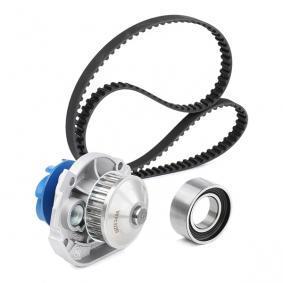 PANDA (169) SKF Water pump + timing belt kit VKMC 02203