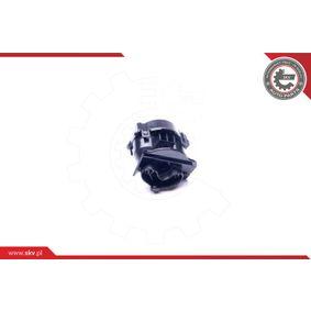 Ventil Kurbelgehäuseentlüftung 31SKV071 ESEN SKV