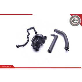 Reparatursatz, Kurbelgehäuseentlüftung ESEN SKV Art.No - 31SKV099 OEM: 11617516007 für BMW kaufen