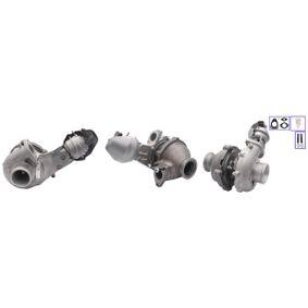 Turbocompresor, sobrealimentación TURBO MOTOR Art.No - PA7861372 obtener