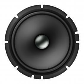 PIONEER TS-A1600C Speakers