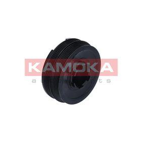 KAMOKA RW012 adquirir