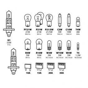 Bulbs Assortment 58161 online shop