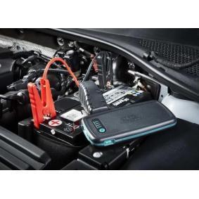 RPPL200 Carregador de baterias para veículos
