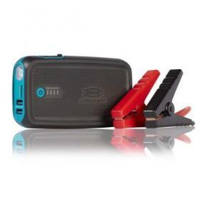Batteriladdare för bilar från RING: beställ online