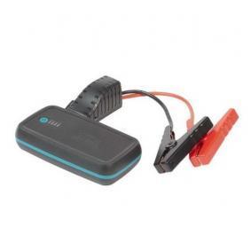 RING Batteriladdare RPPL300 på rea