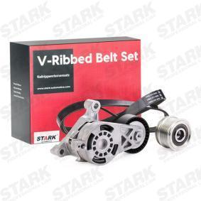 038903119A für VW, AUDI, SKODA, SEAT, PORSCHE, Keilrippenriemensatz STARK (SKRBS-1200062) Online-Shop