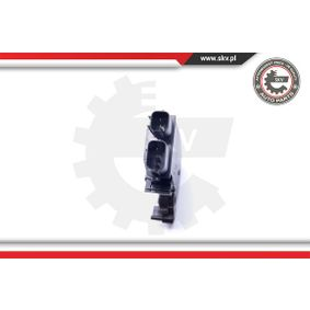 ESEN SKV Motor de cerradura de puerta (16SKV601)