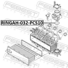 Гарнитура на всмукателния колектор RINGAH-032-PCS10 FEBEST