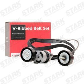 11287631810 für BMW, MINI, Keilrippenriemensatz STARK (SKRBS-1200109) Online-Shop