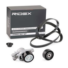 RIDEX 542R0133 Online-Shop