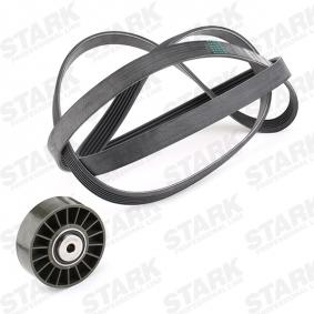 STARK SKRBS-1200176 V-Ribbed Belt Set OEM - 1013202 FORD, MAZDA, LEMFÖRDER, GEO, DT Spare Parts, SAMPA cheaply