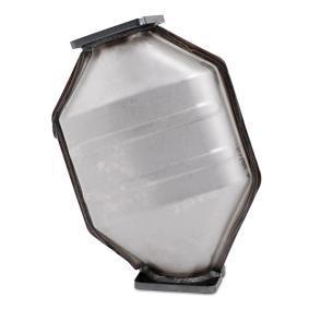 RIDEX Rußpartikelfilter (1256S0023)