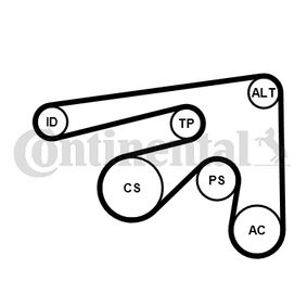 Poly v-belt kit 7PK2061K1 CONTITECH
