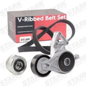 L038903119S für VW, AUDI, SKODA, SEAT, Keilrippenriemensatz STARK (SKRBS-1200289) Online-Shop